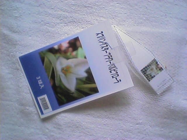 Jt100013.jpg